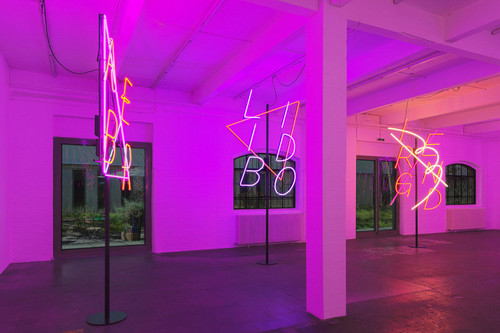<i>Installation view, Kunsthalle St. Gallen, St. Gallen, Switzerland, 2013</i>,       <br />             <br />