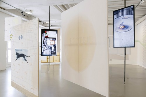 »Installation view Kasseler Kunstverein, Kassel, Germany, 2014«,       <br />             <br />      photo: Nils Klinger