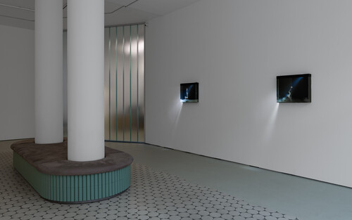 <br />      Installation view, 'Enclosed Natures' exhibition at Wentrup,       <br />      Photo credit: Trevor Good