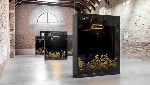 »Installation view of 'Mesk-Ellil' (2015-2019), in the exhibition, 'Luogo e Segni' at Punta della Dogana, Palazzo Grassi, Venice«,       2019<br />      Copyright Palazzo Grassi, Photo Credit: Delfino Sisto Legnani e Marco Cappelletti,       <br />