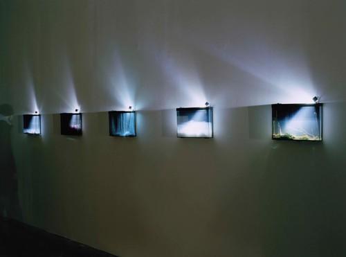 <i>Exhibition view, Palais de Tokyo,