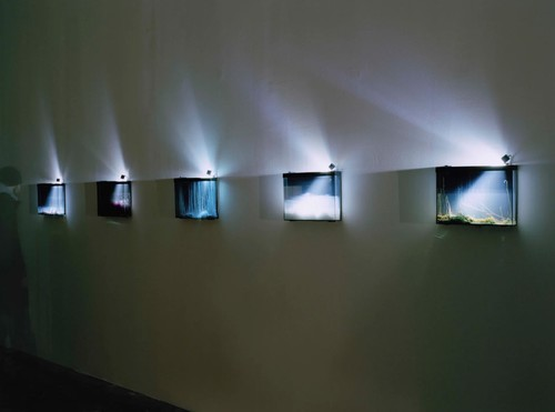 »Exhibition view, Palais de Tokyo,