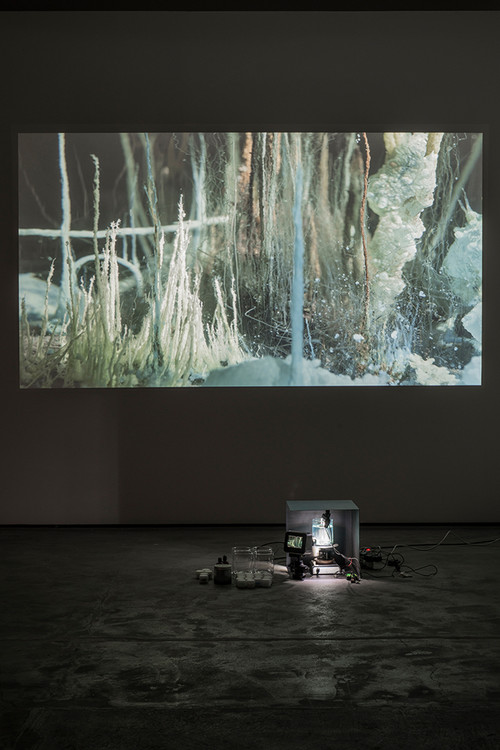 <i>Présage</i>,       2007 - 2013<br />      Video HD from a Performance, Beaker chemicals, camera and live-screening,        4:50 min.<br />      Exhibition view Wentrup, Berlin, Germany, 2014