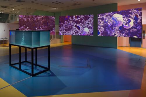 <br />      Exhibition view, Yokohama Triennale, Japan, 2020,       <br />