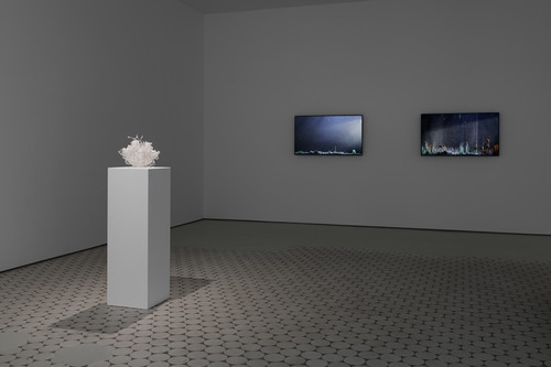 2019-2020<br />      Installation view, 'Enclosed Natures' exhibition at Wentrup,       <br />      Photo credit: Trevor Good