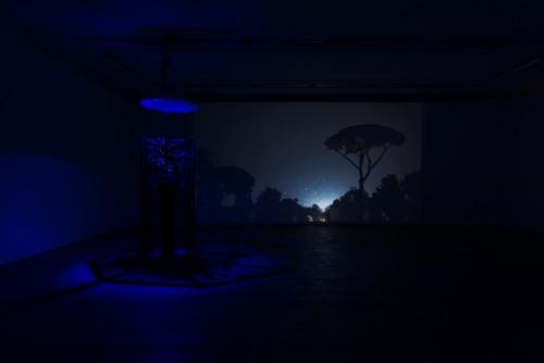 »Exhibition view Wentrup, Berlin, Germany«, 2015<br /><br />