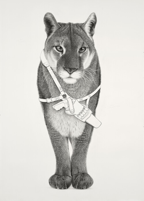 <i>Mountain Lion 2</i>,       2020<br />      pencil and ink on paper,        160 x 114 cm<br />