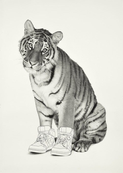 <i>Tiger 2</i>,       2019<br />      pencil and ink on paper,        184 x 130 cm<br />