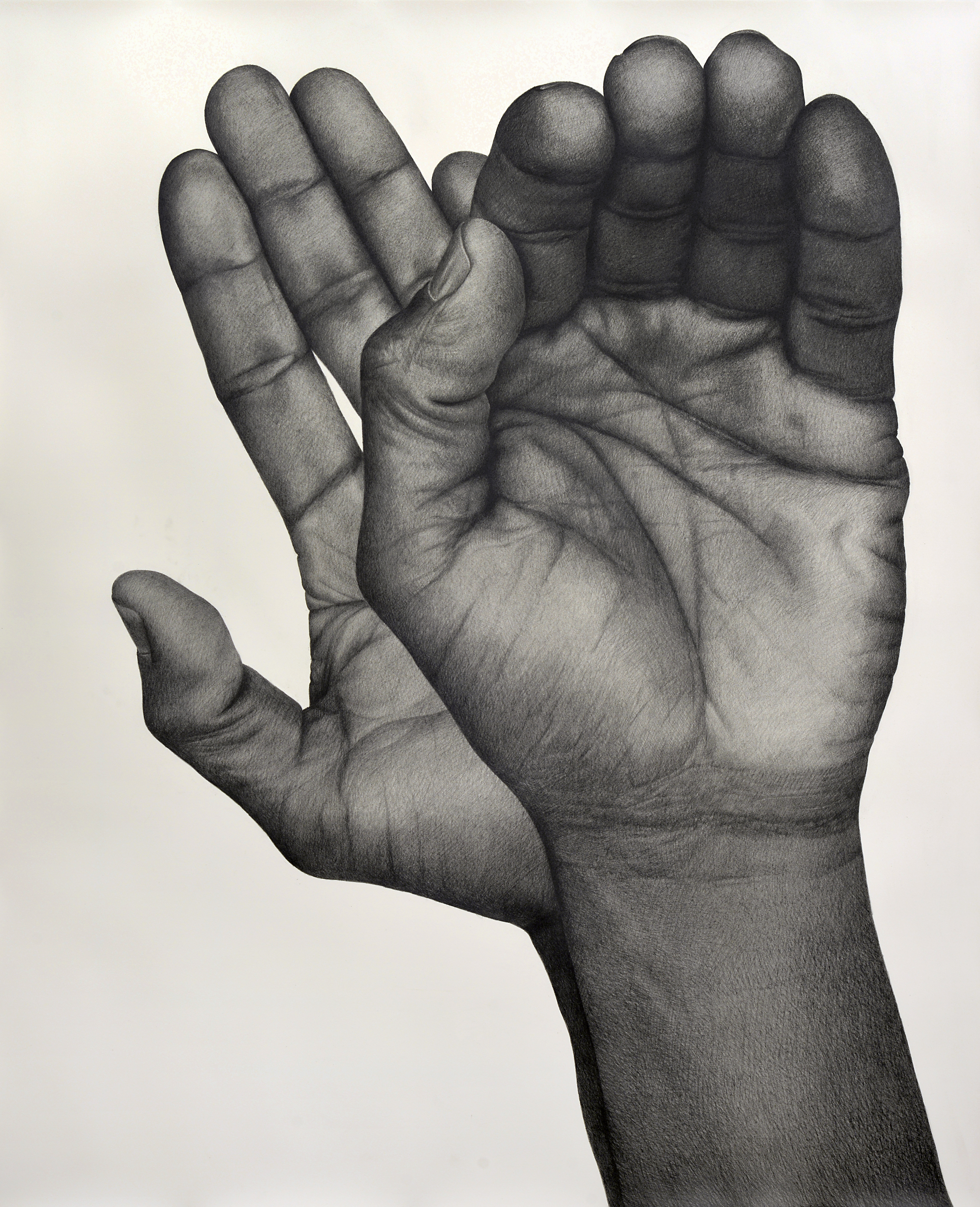 <i>Two Handed (Left)</i>,       2017<br />      pencil on paper,        130.81 x 106.68 cm<br />