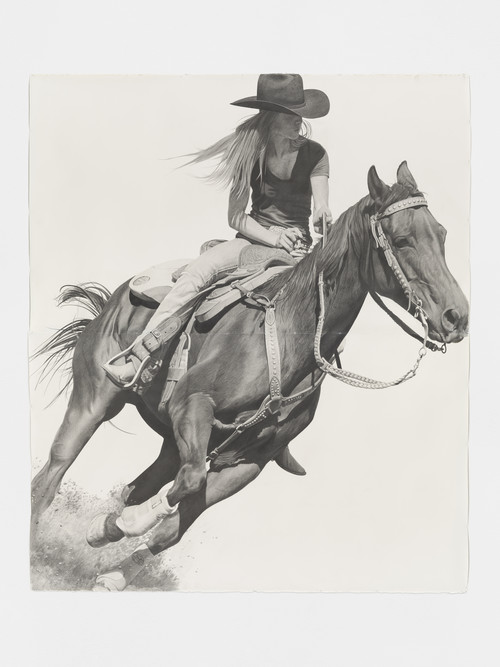 <i>Rodeo</i>,       2016<br />      pencil on paper,        262 x 224 cm<br />