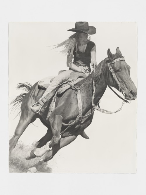 »Rodeo«, 2016<br />pencil on paper, 262 x 224 cm<br />