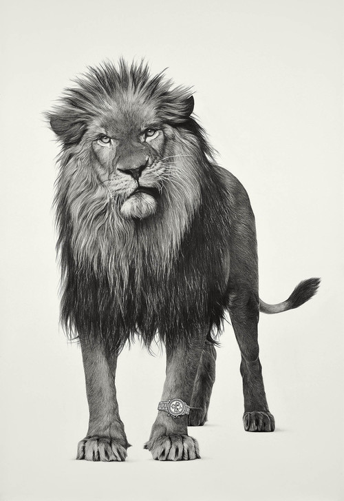 <i>Lion 3</i>,       2019<br />      pencil and ink on paper,        193 x 130 cm<br />