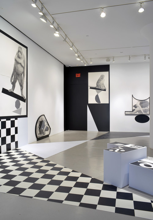 <br />             <br />      Installation view, Biennial of the Americas, 2015
