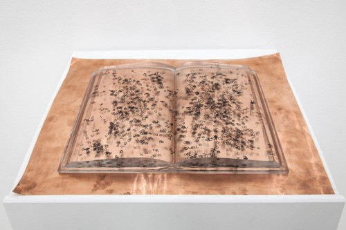 »book (unlearning) - entire histories are learnt by heart«, 2013<br />polyurethane, aluminum, copper, 40 x 30 x 3 cm<br />