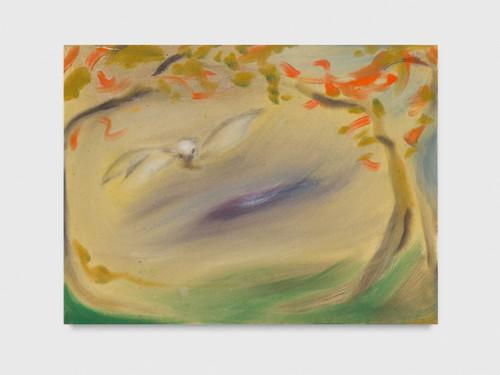 <i>Barn Owl</i>,       2019<br />      acrylic on canvas,        62 x 81 cm<br />