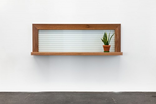»Dr. Pauly«, 1997<br />wood, glass, plant, 70 x 230 x 35 cm<br />
