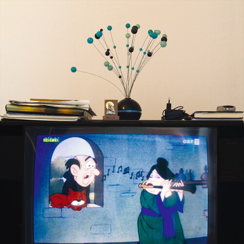 <i>Die Welt im Wohnzimmer: Das Fernsehgerät als Sockel und Hausaltar (The World at Home. The TV as plinth and house altar)</i>,       2001/2009<br />      Series of 50 color photographies,        52 x 52 cm<br />      Detail