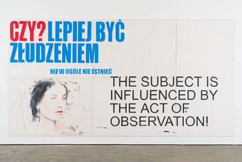<i>The subject (is influenced by the action of observation)</i>,       2013<br />      Acrylic and pastel on canvas,        280 x 540 cm<br />