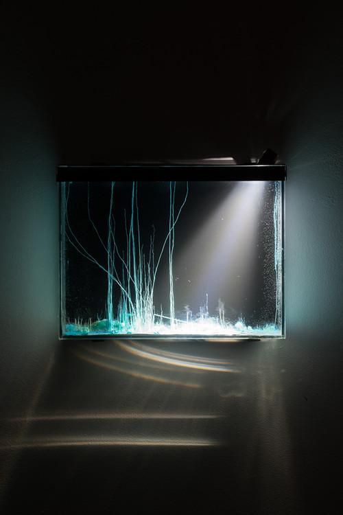 <i>Tranche, présage</i>, 2014<br />chemical evolution slowed landscapes in glass tank, 37 x 28 x 5 cm<br />