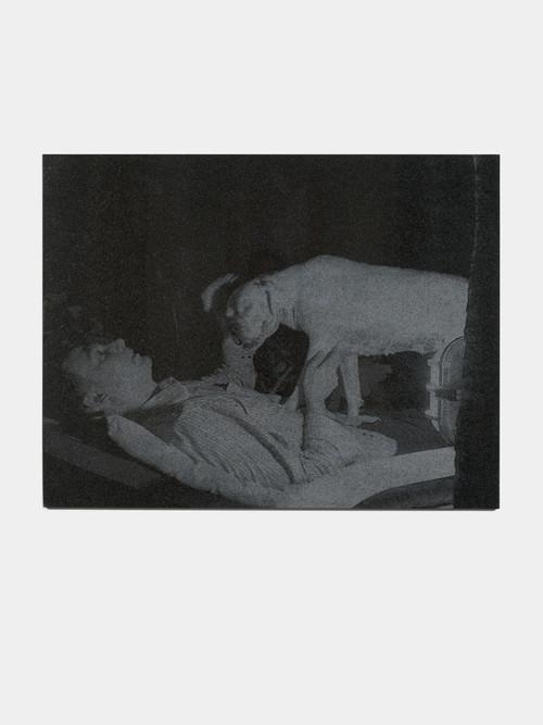 <i>Selbstportrait mit Diabola</i>, 2013<br />laser gravure on granite, 92 x 119 cm<br />