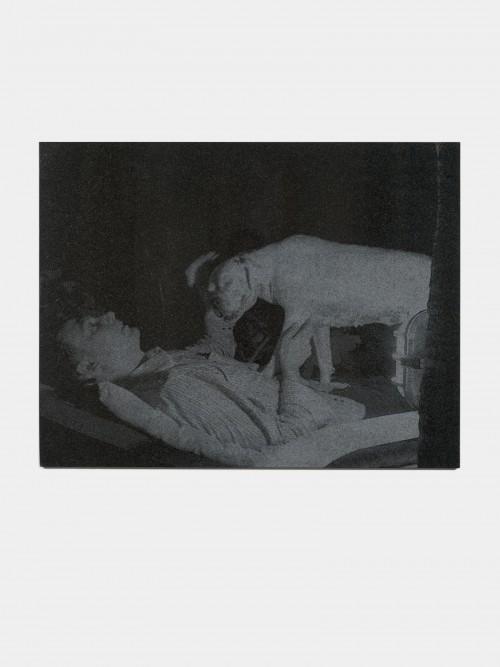 »Selbstportrait mit Diabola«, 2013<br />laser gravure on granite, 92 x 119 cm<br />