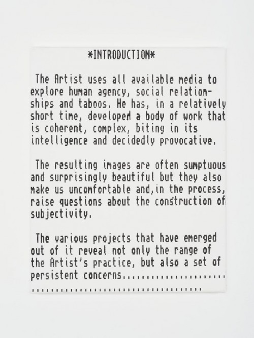 »Introduction«, 2013<br />acrylic on canvas, 50 x 40 cm<br />