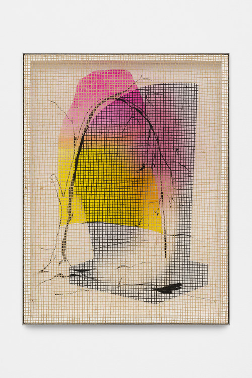 DAVID RENGGLI<br />»Desire / Painting / Nature (5)«, 2016<br />silk-screen print, acrylic on wood, jute net in aluminium shadow gap frame, 108 x 82 cm<br />
