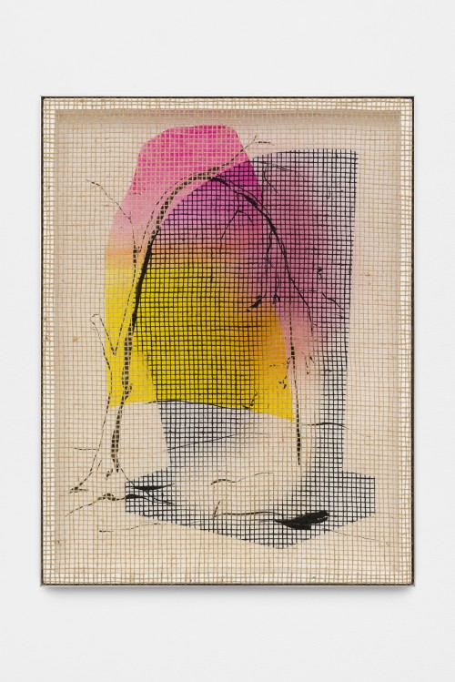 DAVID RENGGLI<br />»Desire / Painting / Nature (5)«, 2016<br />silk-screen print, acrylic on wood, jute net in aluminium shadow gap frame, 108 x 82 cm<br />