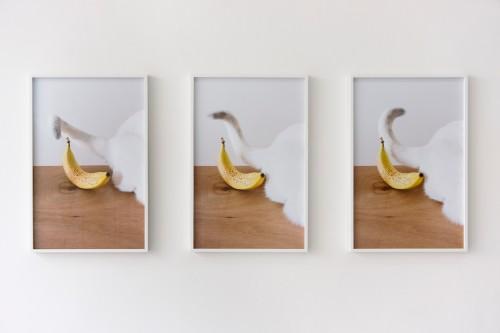 KATRIN SONNTAG<br />»Conversation Piece«, 2012-2017<br />, 3 parts, 3 inkjet print, each part 62 x 40 cm / overall dimension 62 x 150 cm<br />