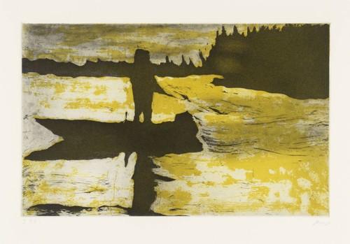 PETER DOIG<br /><i>Grasshopper</i>, 1997<br />folder with 10 etchings, 53 x 36 cm<br />