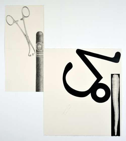 »Capricorn Clamp, Cuban Carrot«, 2014<br />pencil and enamel on paper (folded), 85 x 76 cm<br />
