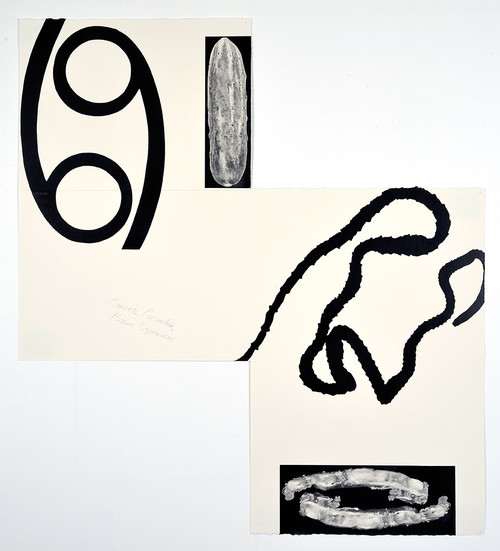 <i>Cancer Cucumber, Bacon Tapeworm</i>, 2014<br />pencil and enamel on paper (folded), 85 x 76 cm<br />