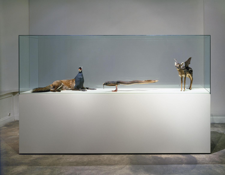 Installationen aus 25 Jahren Sammlung Falckenberg